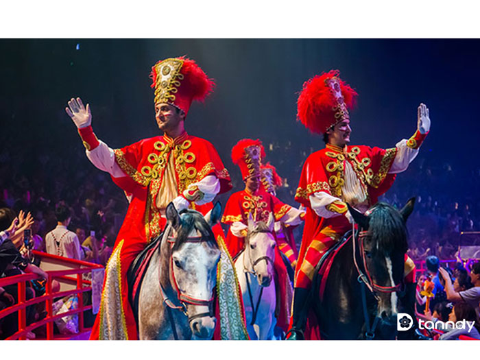 Chang-Long-International-Circus-4