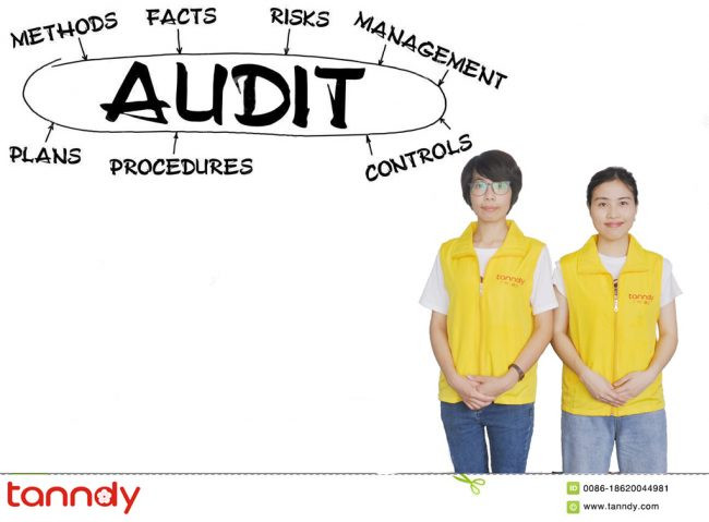 tanndy-ltd-supplier-audit