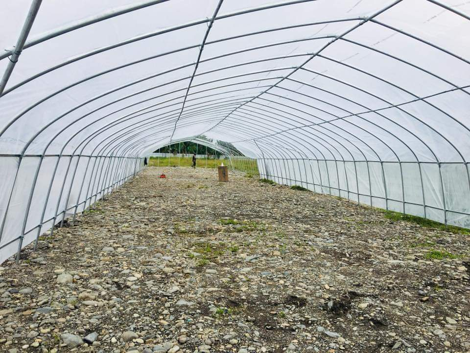 Green house for agricultural planting